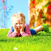Ziemia do trawników